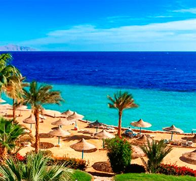 Ocio Egipto