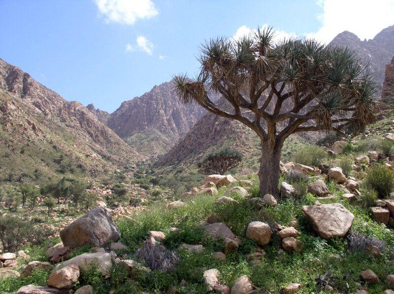 Parque Nacional Gebel de Elba