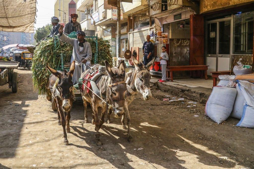 Mercado Local en Asiut, Egipto