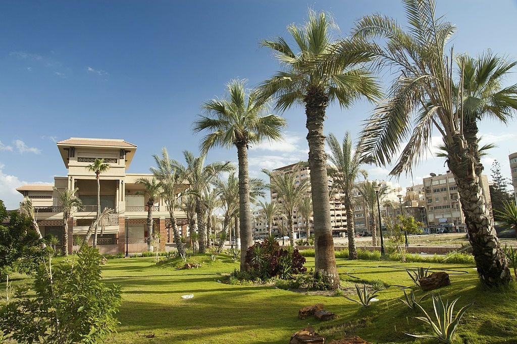 Oasis en Port Said